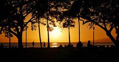 """I Had The Best Intenions"" (jcc55883) Tags: ocean sunset sky silhouette hawaii nikon waikiki oahu horizon pacificocean waikikibeach kapiolanipark yabbadabbadoo d40 kalakauaavenue waikikisunset nikond40 queenssurf"