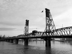 puente y gaviota (eclecctica) Tags: blackandwhite usa byn blancoynegro oregon portland blackwhite bn eua