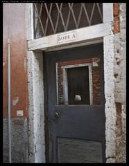 _64Z4951 copy (mingthein) Tags: life venice people italy digital 645 pentax d availablelight photojournalism documentary pj medium format ming fa select reportage venetians onn 5528 thein photohorologer 44x33 55f28 mingtheincom 645z mingtheingallery