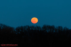 Full Moon at Percy Warner Park - February 3, 2015 (mikerhicks) Tags: sunset usa geotagged unitedstates nashville hiking tennessee fullmoon warnerparks lukeleaheights vaughnsgap canon7dmkii sigma18250mmf3563dcmacrooshsm geo:lat=3607787167 geo:lon=8687627667