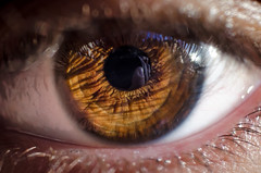 Door to soul (Johnidis) Tags: door iris reflection eye soul d5100 johnidis