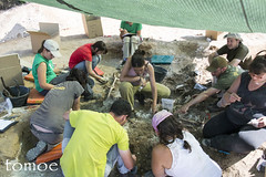 Equipo (Natalia Lozano) Tags: archaeology fosa fosacomun burgos equipo arqueologa massgrave exhumation exhumacin arquelogos estepar