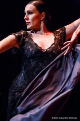 Paloma Gmez dancing at Chicago Cultural Centre (Alejandro Mallado) Tags: chicago festival photography photographer centre alejandro flamenco fotgrafo cultural mallado erbez
