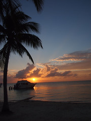 Grand Cayman sunset (Acquarius Sea Tours) Tags: ky destinationwedding grandcaymanvacation grandcaymanfamilyactivities bestthingtodograndcayma caymanactivities thingstodograndcayman besttourgrandcayman grandcaymanattractions