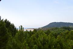 Sarıkum (Nese Ozturk) Tags: travel sea nature flickr turkiye blacksea karadeniz sinop