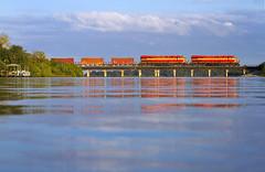 Gators Eye View (MRL 390) Tags: railroad water train river florida gator alligator locomotive railroadbridge ge freight generalelectric freighttrain portorange fec sprucecreek gevo floridaeastcoast portorangeflorida gelocomotive gees44c4 sprucecreekflorida fec101 fec821 floridaeastcoast821 floridaeastcoast807 fec807 feces44c4 fectrain101