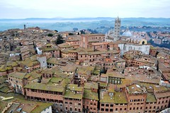 Italy: Siena (sisley72) Tags: houses italy panorama cathedral roofs siena duomodisiena medievalcity