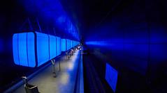 blue worm (Froschknig Photos) Tags: blue port train hamburg blues tram zug bahnhof fisheye ubahn uni universitt worm blau hafen 6000 hafencity 2016 fischauge blueworm a6000 a6k sel16f28 vclecf1 sonyalpha6000 ilce6000