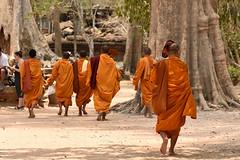DSC_7014 (Omar Rodriguez Suarez) Tags: cambodia buddhist monks monjes camboya budistas