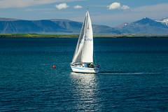 Sailin' (Jake's Gallery) Tags: ocean sea lake water harbor boat iceland sailing ship wind yacht windy vessel bluesky sail reykjavk