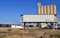 Big & Small in Grain Storage (knutsonrick) Tags: train texas amarillo claude westtexas bnsf gatx coaltrain grainstorage coveredhopper
