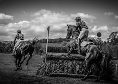 Chatsworth Horse Trials (Trev Bowling) Tags: horse jump peakdistrict rider trials chatsworth hurdle 2016