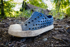 146366  2016  lost sole (Doug Churchill) Tags: 365 366 sonyrx100m3 alone ambient apparel asphalt backcountry bidwell bidwellpark bigchicocreek buttecounty ca california canyonland chico citypark closeup daylight deject dejected dejection down emptiness empty fashion humaninterest individual loneliness lonely loss lost lowangleview lowangleviews outside perspective project366 sad sadness secluded seclusion shoe shoes single sole solo sorrow stilllife uncertain uncertainty unlucky void