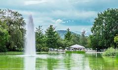 Europapark Klagenfurt (wigerl) Tags: light tree green nature 35mm landscape austria licht sterreich europa europe fuji foto sunday natur krnten carinthia grn landschaft bume sonntag europapark 2016 klagenfurt landeshauptstadt fuji35mm14