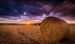 DSC_9857 (christopherpaparisvas) Tags: sunset colors field amazing horizon cyprus haystack larnaca d800 kalo xorio