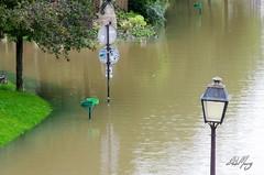 Crue de la Seine à Paris (Sebmarg) Tags: crue paris portdelarsenal seine