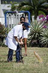 2016_05_07_Amadeus_Foguetes_Sementeira_Foto_Saulo_Coelho (16) (Saulo Coelho Nunes) Tags: amadeus rocket foguete