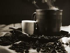 Warm- still life (self.defenestration) Tags: stilllife food coffee closeup beans warm tea flash plate calm steam