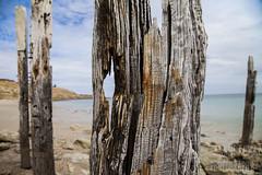 Willunga Jetty (Hamish Mckay) Tags: sea beach photography coast rust decay jetty south australia adelaide wreck