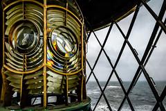 Lantern (Richard_Turnbull) Tags: light sea lighthouse lamp lens coast nikon northumberland fresnel lantern northeast d600 stmarysislandlighthouse