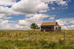 Dirt Hills Farmer (TigerPal) Tags: blue summer sky abandoned rural farm hills forgotten prairie saskatchewan plains bluehills sask flatland gravelroad dustyroad avonlea dirthills oncewashome dirthillsfarmer