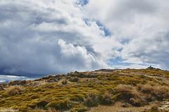 Nelson lake's mountain (@robinlautier) Tags: nouvellezelande nz travel trip explore discover nikon landscape paysages