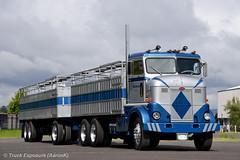 DSC_5811 (Truck Exposure) Tags: coe cabover truckntrailer