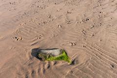 Scotland-H-1132 (Ian_Boys) Tags: beach scotland fuji fujifilm glenelg 2016 x100t