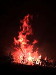 20160615-FS-UNK-0002 (USDAgov) Tags: fire us az whiteriver wildfire cedarfire