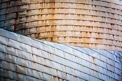 The Guggenheim Museum Bilbao (lukskat) Tags: europe architecture bilbao spain frankgehry theguggenheimmuseumbilbao