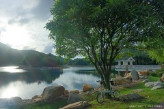 (janetcmt's pictures) Tags: hongkong foldingbike rx100 rx100m3