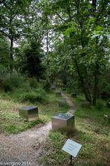 Lontano dal sentiero battuto (vengino) Tags: parco del chianti sculture siena toscana parchi macchiamediterranea parcosculturedelchianti