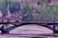 Paris Juin 2016 - 256 sculptures sur le Pont des Arts (paspog) Tags: sculpture paris france statue seine statues sculptures inondation crue pontdesarts inondations crues