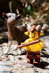 """""""Oh you kid..."""" (Chris Blakeley) Tags: lego goat faun minifigures toyphotography"""