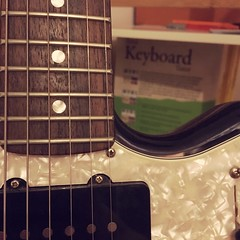 Keyboard or strings? (180/366) (garrettc) Tags: dof bookcase books fender guitar oxford home 366 365