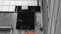 Industrie Brache (hubert_hamacher) Tags: maastricht schwarzweiss weiss alte schwaz schwarzweis hafenanlage