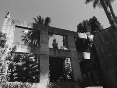 (electricgecko) Tags: barcelona monochrome palm palmtree iphone mobile concrete architecture bofill ricardobofill