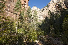 October in West Fork of Oak Creek (JR-pharma) Tags: road park trip arizona usa southwest west classic nature america creek canon river french liberty eos 1 nationalpark oak october hiking mark south united rando sedona fork az roadtrip hike september national libert 5d canon5d states parc printemps franais southwestern randonne aventure 2015 oakcreek westfork canoneos5d parcnational photoroadtrip westforkofoakcreek parcnationaux oakcreekriver jrpharma