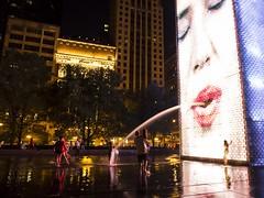 Millennium Park Monoliths (Adrian.M.A.) Tags: night park chicago monolith lowlight millennium
