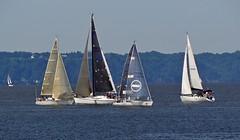 Comptition de voile - Sailing competition (Jacques Trempe 2,320K hits - Merci-Thanks) Tags: canada river boat quebec competition stlawrence sail stlaurent bateau voile voilier fleuve stefoy