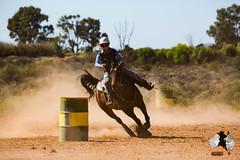 20160423-2ADU-015 Pferderennen in Yunta