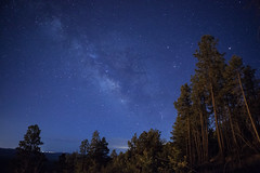 2016_07_09_13332-1 (Doug's Graphics) Tags: trees sky pine night stars astrophotography milkyway