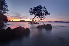 Twilight at Philippine islands (Twilight Tea) Tags: philippines may palawan 2016 diveresort coronbay chindonan