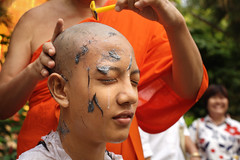 7518 Tonsured as a monk (Mishel Breen) Tags: park travel shadow red orange love tourism wall asian thailand religious temple town asia buddha buddhist young culture style monk philosophy palace national shaving thai shave sacred tradition wat moat dynasty chiangrai tonsure