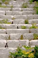 Milos 015 (2bGreek) Tags: old flowers shadow sea plants white home beautiful field stairs islands town ancient mediterranean graphic traditional steps aegean scenic greece romantic symmetric majestic depth chora cyclades whitewashed mylos buildlings