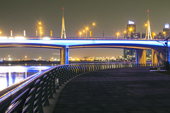 Business Bay Bridge (Ali Sabbagh) Tags: road bridge water night creek canon lights neon dubai uae dxb businessbay 1100d