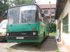 IMG_7328 (Visor-Timisoara) Tags: urban bus public busse transport romania 280 timisoara 260 ratt ikarus autobuz