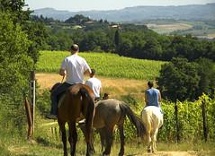 Il Vecchio Maneggio  Tuscany Riding (Il Vecchio Maneggio) Tags: tuscany chianti sangimignano toscana toscane toskana agriturismo ilvecchiomaneggio agriturismotoscana agriturismosangimignano