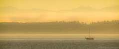 Sunset from the ferry. (McKristen) Tags: sunset mist mountains nature water fog sailboat landscape washington san pacificnorthwest olympics sanjuanislands washingtonstate pnw juans olympicmountains pacnw