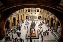 London-3132 (sally henny penny) Tags: uk naturalhistorymuseum dinosaurbones londonengland 24105mmf4lisusm canon6d london2013 lightroom5
